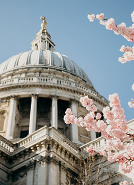 flowers infront of london architecture