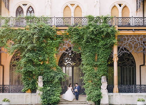 couple posing surrounding by climbing ivy plant