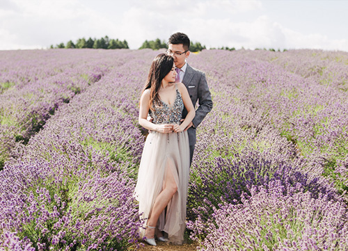 bride and groom posing amongst chinese lavender near oxford