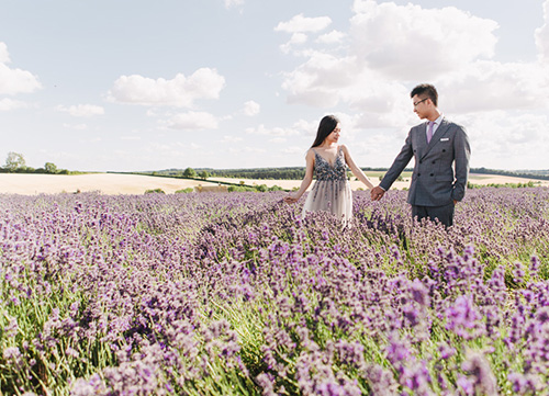 couple hold hands amongst lavender fields near oxford