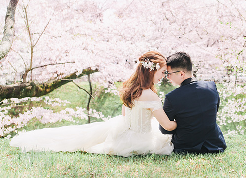 bride and groom sit under tree of cherry blossoms